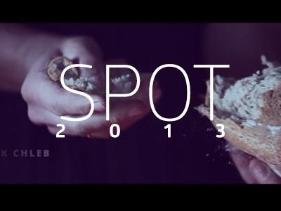 Spot 2013